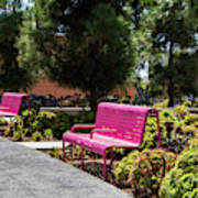 Pink Chairs At Grand Park Poster