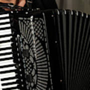 Play The Accordion Poster