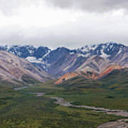Polychrome Pass In Denali National Park Poster