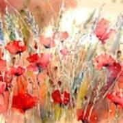 Poppy Fields Forever Poster