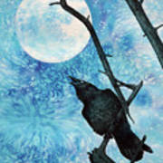 Raven with Torrey Pine Branch and Cold Moon Poster