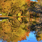 Reflections Of Autumn Poster