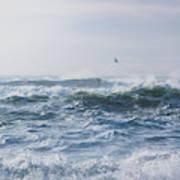 Reynisfjara Seagull Over Crashing Waves Poster