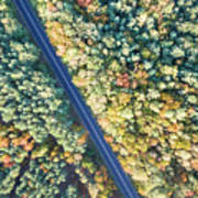 Road Through Colorful Autumn Forest Poster
