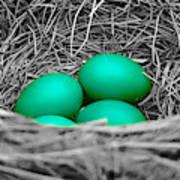 Robin's Nest Selective Poster