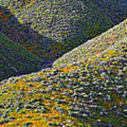 Rolling Hillsides In California - Vertical Poster