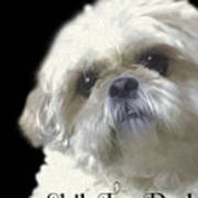 Shih Tzu For Dad Poster