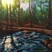Smoky Mountain Stream Poster