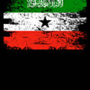 Somaliland Shirt Gift Country Flag Patriotic Travel Africa Light Poster