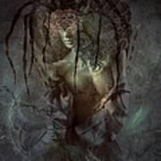 Spiderella Poster