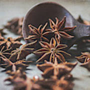 Star Anise 4825 By Tl Wilson Photography  Poster