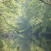Summer Time River And Trees Poster