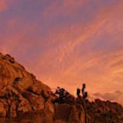 Sunset, Joshua Tree National Park Poster