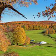 Tending To The Farm Woodstock Vermont Vt Vibrant Autumn Foliage Yellow And Orange Poster