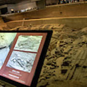 Terra Cotta Warriors In Pit 3 Ruins With Diagram Poster
