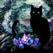 The Cat With Aquamarine Eyes And Celestial Crystals Poster