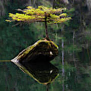 The Little Tree On Fairy Lake 5 Poster