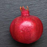 The Pomegranate Fruit Poster