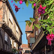 The Shambles, York Poster