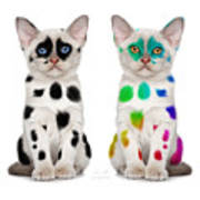 The Twins Dalmatian Cats Poster