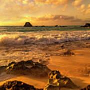 Thoughtful Morning Golden Coastal Paradise  Poster