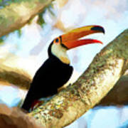 Toucan On A Tree Poster