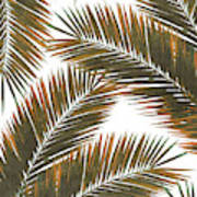 Tropical Palm Leaf Pattern 6 - Tropical Wall Art - Summer Vibes - Modern, Minimal - Brown, Copper Poster