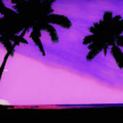 Tropical Pink Sunset Poster