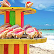 Turks And Caicos Conchs On A Spool Poster