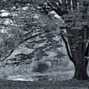 Twin Lake Mist Poster