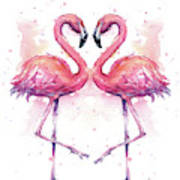 Two Flamingos In Love Watercolor Poster