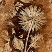 Vintage Blossom Poster