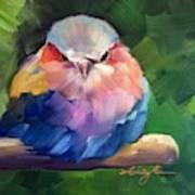 Violet Breasted Roller Bird Poster
