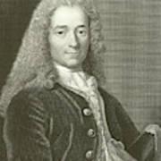 Voltaire Portrait, Engraving Poster