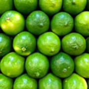 Wall Of Limes Poster