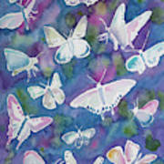 Watercolor - Butterfly Design Poster