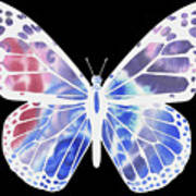 Watercolor Butterfly On Black V Poster