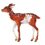 Watercolor Dotted Fawn Painting. Hand Poster