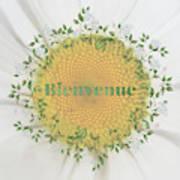 Welcome - Bienvenue Poster