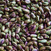 Whirling Pistachios Poster
