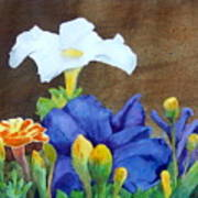 White And Purple Petunia And Marigolds Poster