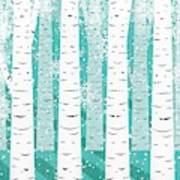 White Birch And Snow Poster