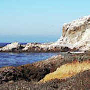 The White Rocks Of Piedras Blancas Poster