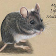 Wild Deer Mouse Poster