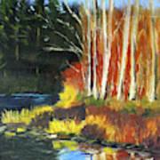 Winter Sunshine Landscape Poster