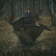 Witch Of The Forest With Her Crows Poster