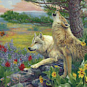 Wolves In The Spring Poster