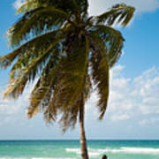 Woman Observing Caribbean Sea On Sandy Poster