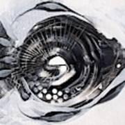 X Ray Fish Poster