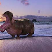 Yawning Coastal Hippo Hello Poster
